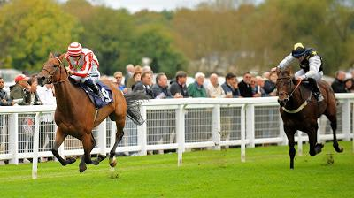 SEA THE STARS - A Racehorse For The Serious Players